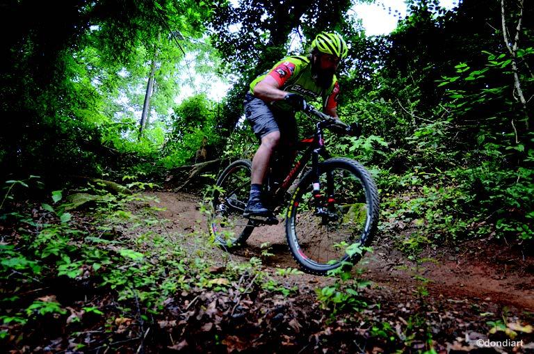 Biking Ellijay