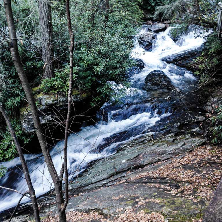 Dukes Creek Falls photo courtesy of Shawn Taylor